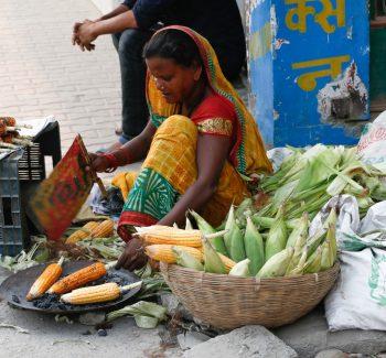 विराटनगर बजार क्षेत्रमा मकै पाेल्दै सडक विक्रेता